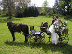 CALEZA (CART) FOR WEDDINGS