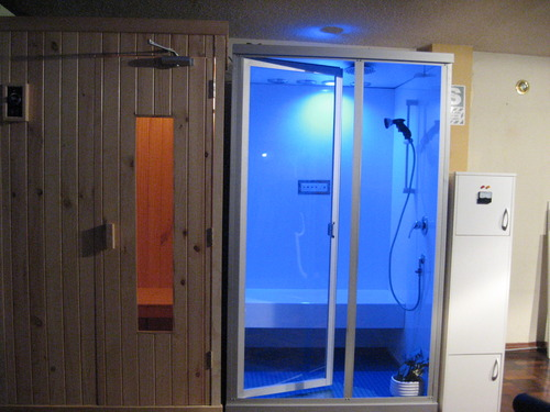 Portable steam cabins and sauna