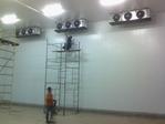 UPIS - deboning room
