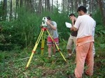 Surveying Professionals