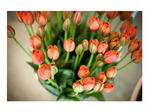 prachtige florale motieven voor bruiloften in Cartagena