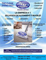 carpet cleaner rosarito
