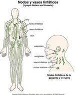 POSLIPO TREATMENT - LYMPHATIC DRAINAGE IN LIMA