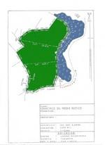 Plan of land for sale Tarapoto - Laguna Ricuricocha