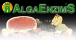Algaenzims: Power in seaweed!