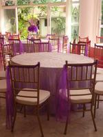venta y alquiler de sillas tiffany / tarimas // carpas sonido / ilumi