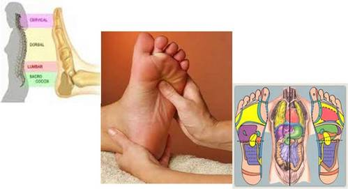 Reflexologia. tratamento através das solas dos pés.