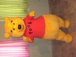 Mascot Customes