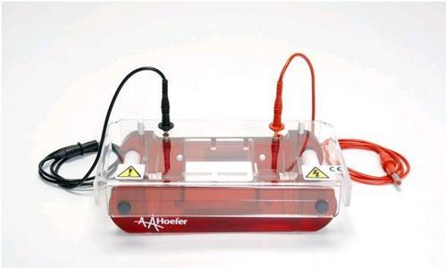 Equipos de electroforesis para ADN y proteinas Hoefer