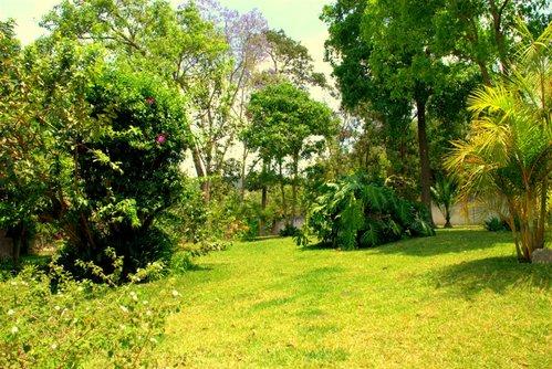 Centro de Rehabilitacion en Guatemala