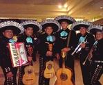 Mariachis en San Miguel-Mariachi Sones de México