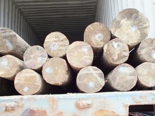 postes de pino amarillo del sur