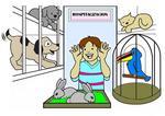 pets hospitalization