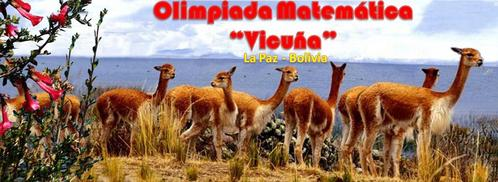 Wiskunde Olympiade Vicuna