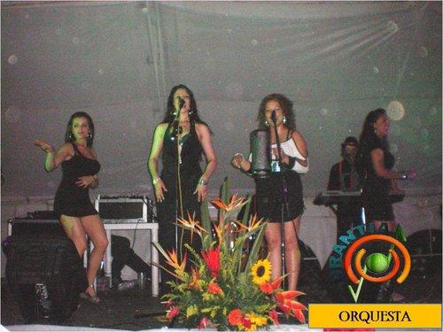 grupo musical en bogota