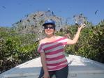 Mangroves and Bird Island