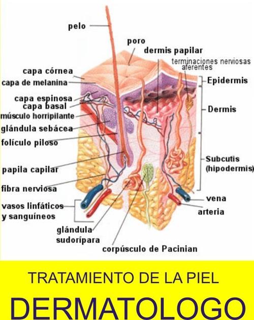 Dermatologist in La Molina / Dr Juan Jose Fajardo