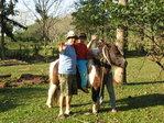 STROLLS IN HORSES