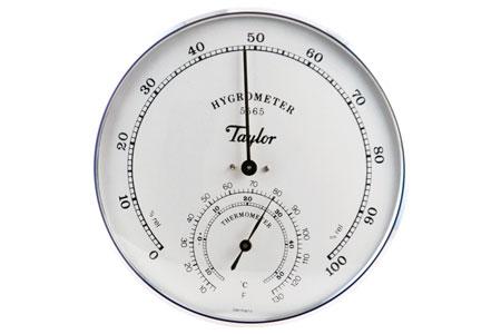 Taylor jumbo analoge Termohigrometro