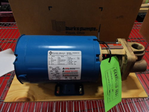 STEAM - ELECTROBOMBA BURKS PUMP 7CT7M