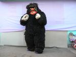 Suit of Gorilla