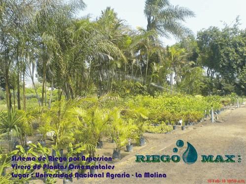 Sistema de Riego Por Aspersion para Aricultura